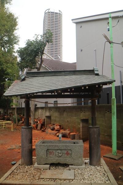倒木が接触した手水舎の屋根