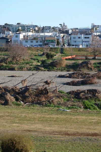 令和元年台風19号の爪痕が残る多摩川
