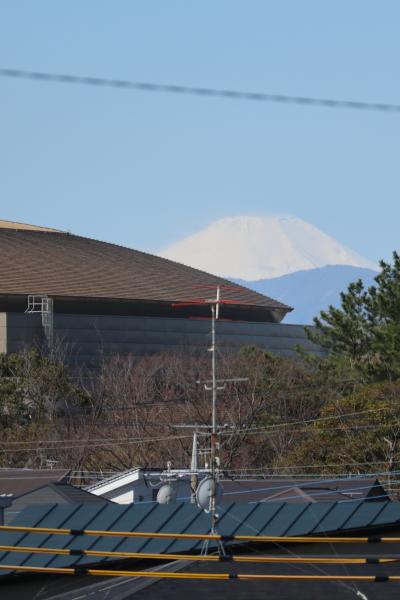多摩川土手からの富士山