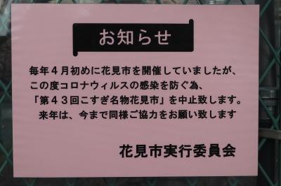 「こすぎ名物花見市」中止のお知らせ