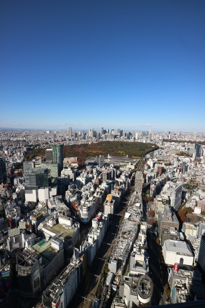 新宿方面と代々木公園