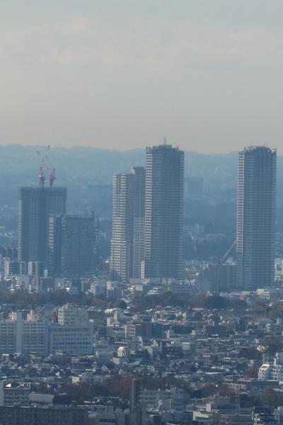 武蔵小杉の高層ビル群